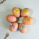 부활절 포장지 계란 달걀 장식스티커 KJ-19 2종중랜덤