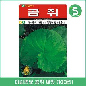 곰취씨앗 100립 산나물 산채류 쌈채소