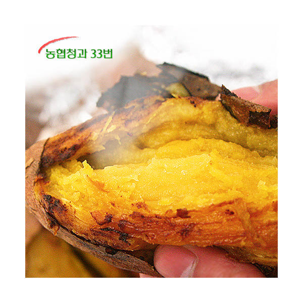 (현대Hmall) 농협청과33번  당도높은 2019 햇 꿀고구마 5kg 왕특