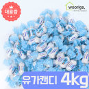 GG유가 사탕 4kg 대용량사탕 업소용사탕 종합 캔디 (H)