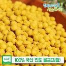 진도 울금(강황) 환 500g 농부 직접 재배 100% 진도산