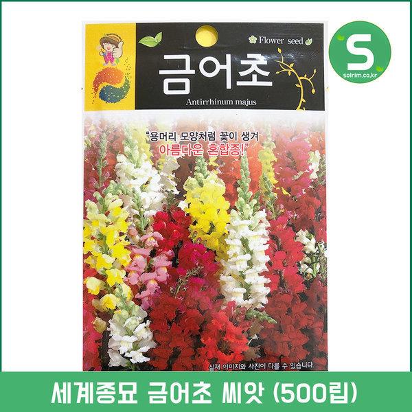 금어초씨앗 500립 금어초 꽃씨앗 꽃씨 일년생 혼합종