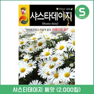 샤스타데이지씨앗 2000립 꽃씨앗 꽃씨 흰색꽃