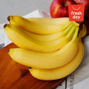 대용량 달콤 싱싱 바나나 정품 8수 13kg이내