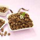 힐링펫 강아지수제사료 모음 소고기사료 1kg