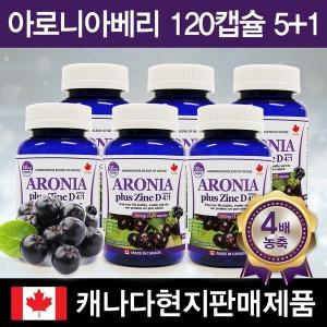캐나다 아로니아베리 120캡슐 6병(5+1)/캐나다직배송