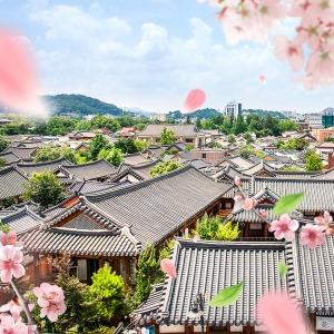 (이용안내확인필수) |전북| 투어패스 한정 반값특가/입장권/자유이용권/관광지/전주/국내여행
