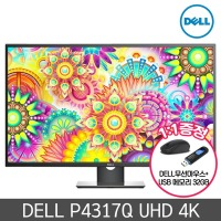 DELL 모니터 P4317Q UHD 4K IPS 광시야각 LED 109cmM