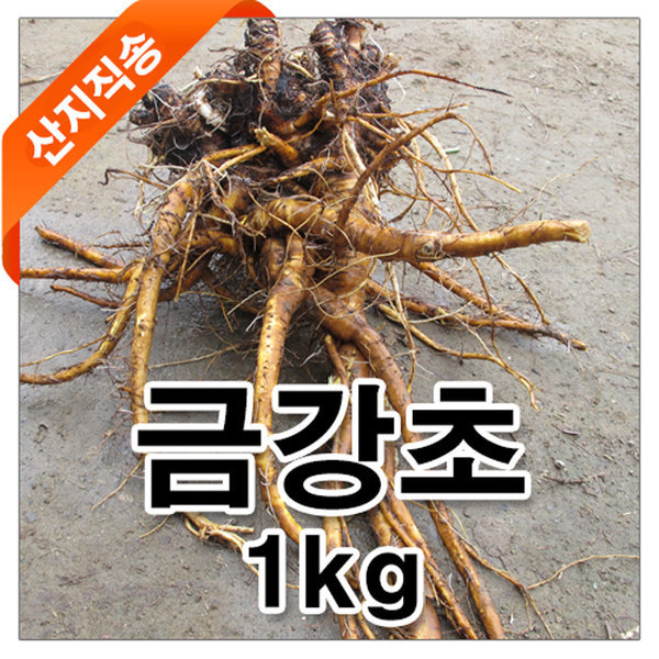 금강초/경남진주/산지직송/초특가