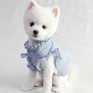 강아지옷 봄옷 스트라이프 프릴 블라우스