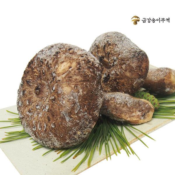 자연산 능이버섯 냉동1kg / 건조100g (금강송이무역)