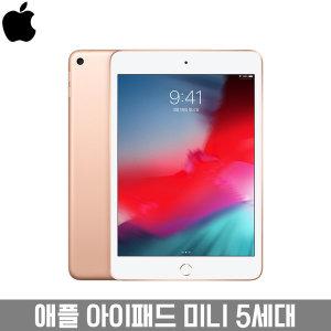 애플 아이패드 미니 5세대 / 64GB WiFi 골드