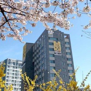 |7프로카드할인|골드리버 호텔(서울 호텔/금천/구로/관악/동작)