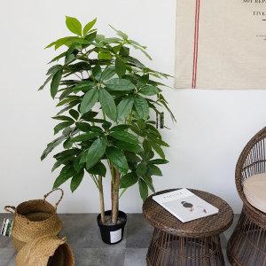 파키라(130cm)조화나무 인조나무 인테리어 플랜테리어
