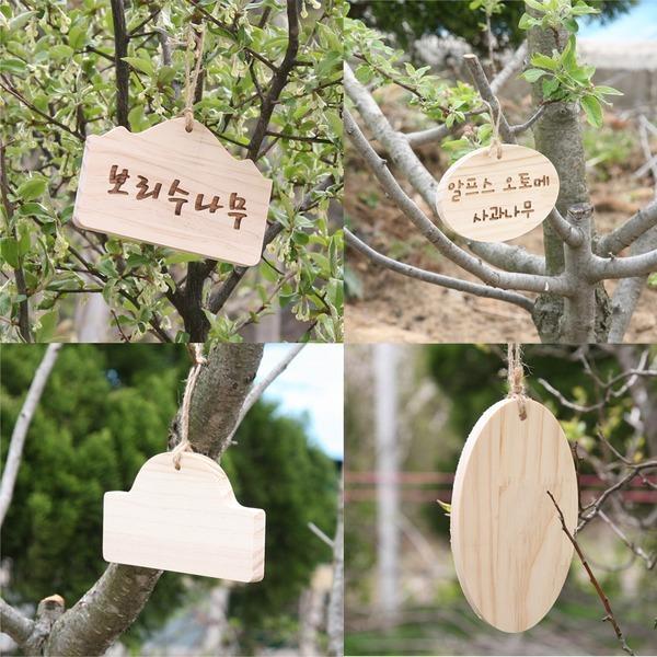 소원 나무판 나무이름표 축제행사 목공체험