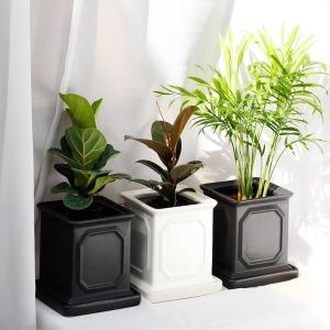 몰딩 세라믹화분 공기정화식물 미세먼지제거식물