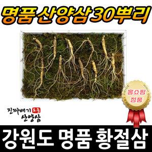 강원도 명품 황절삼 5년근 산삼 산양삼 장뇌삼 30뿌리