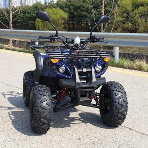 힘좋은 ATV SP 125cc/사륜오토바이/농업용/4륜바이크