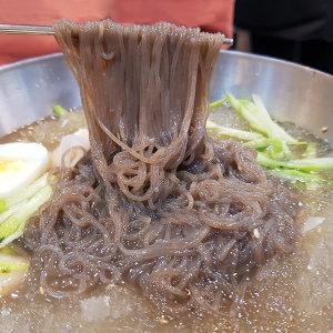 옥천 메밀 냉면10인분+풍원동치미육수10봉+겨자소스10