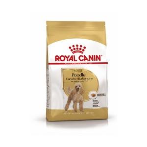 푸들 어덜트1.5kg 로얄캐닌 사료 강아지사료 애견사료
