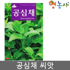 공심채씨앗/ 10g 공심채 모닝글로리 쌈채소 씨앗 종자