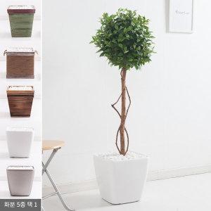 월계수화분set 130cm KO(5-5)조화나무 실내조경 인조나무 인테리어조화