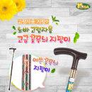노바 꽃무늬 지팡이