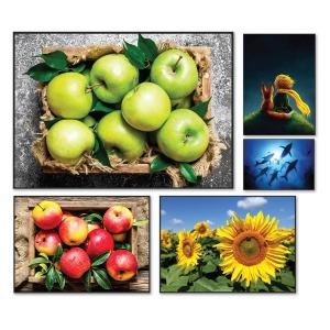 행운 해바라기 사과 or 인테리어 액자 (원목액자포함)