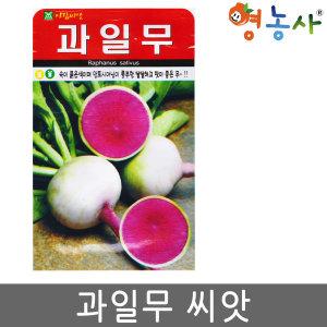 과일무씨앗/ 100립 국내산 글루코시무 빨간무 씨앗