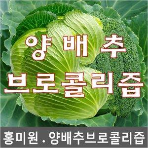 양배추즙 파격가 양배추브 로콜리즙100포/국내산 4계절