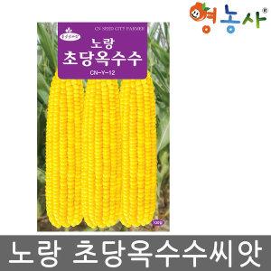 노랑 초당옥수수씨앗 100립 옥수수씨앗 채소씨앗 종자