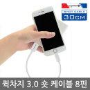 아이폰8핀 30cm 아이폰X XR XS 7 6 5 급속충전케이블