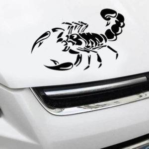 희망L 스콜피온 차량용스티커 초보운전 자동차 셀프