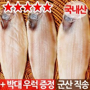 반건조 박대 5~10미 650~950g 국내산 군산직배송/생선