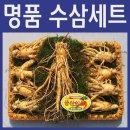 (난 48호 선물셋트) 9-10 뿌리 백화점용 금산산지직송