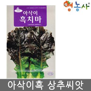 아삭이흑치마씨앗 5000립 흑상추씨앗 상추 채소 씨앗