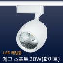 레일조명/LED/레일등/에그 스포트 30W(화이트)-전구색