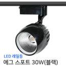 레일조명/LED/레일등/에그 스포트 30W(블랙)-전구색