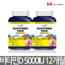 캐나다 솔라 비타민D 5000IU 12개월분 D3 영양제