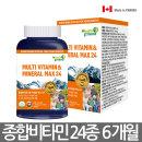 캐나다 종합비타민 미네랄 6개월분 멀티비타민 영양제