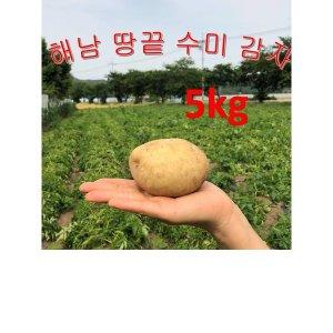 감자/해남감자/수미감자/땅끝햇감자5kg대 해남땅끝감자
