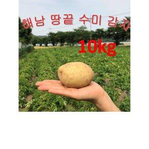 감자/해남감자/수미감자/땅끝햇감자10kg왕특 해남땅끝