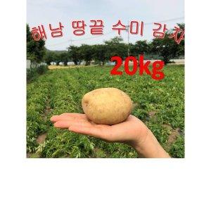 감자/해남감자/수미감자/땅끝햇감자20kg왕특 해남땅끝