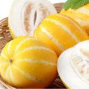달콤아삭 꿀 참외 4.5kg (8-12과/대과)