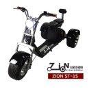 전동스쿠터 ZION ST-15 1500W 12A