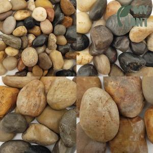 마이플랜트 우화석 20kg 대포장 화분 조경 어항 정원