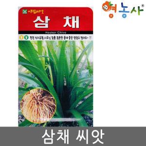 삼채씨앗 100립 삼채씨 삼채 씨 씨앗 종자 판매 희귀