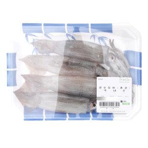 냉동포장 생오징어총알오징어