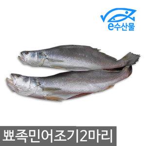 뾰족민어조기2마리 쪼삣조기 제사용생선 민어조기