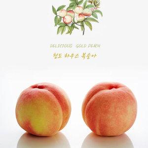 황도/백도 복숭아 엄선선별 청도 털복숭아(5~6입)1.25k